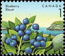 1992 - Blueberry - Canadian stamp - Stamps of Canada