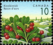 1992 - Kinnikinnick - Canadian stamp - Stamps of Canada